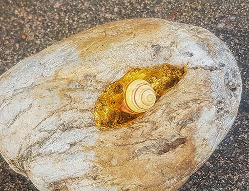 Naturstein mit Vertiefung, Blattgold, Schnecke